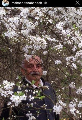 عکس شکوفه باران پدر محسن تنابنده