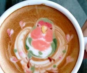 پرتره های زیبای پرندگان داخل یک فنجان قهوه + تصاویر