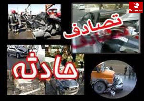 واژگونی اتوبوس حامل 12 گردشگر لهستانی در فارس