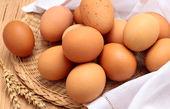 تفاوت تخم مرغ سفید و تخم مرغ قهوه ای در چیست؟