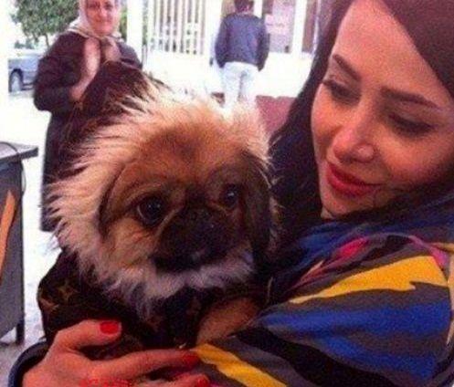 الناز حبیبی و حیوان خانگی اش+عکس