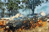افزایش فوتیهای آتشسوزی مریوان به ۴ نفر
