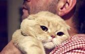 گربه لوس نیما شعبان نژاد + عکس