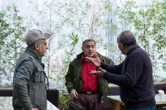 «عشق من: حامد بهداد» را در کافه سینما ببینید