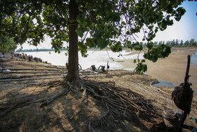 آب بندان لپو که که نسبت به حال وسعت کمتری داشت در حدود ۵۰ سال قبل به دست کشاورزان منطقه زاغمرز بهشهر جهت مصارف کشاورزی وسعت بیشتری پیدا کرد . این آب بندان زیستگاه پرندگان و آبزیان تحت حفاظت محیط زیست محسوب میشود.