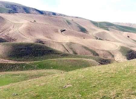5 هزار هکتار از اراضی ملی شهرستان ری حدنگاری شد