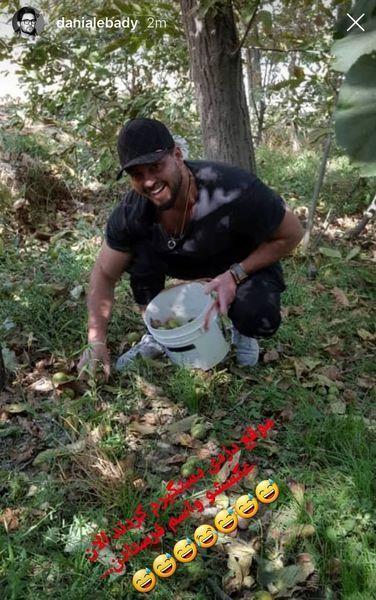 دانیال عبادی در باغ میوه + عکس