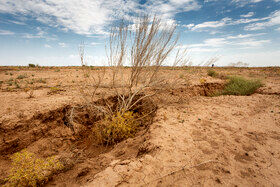 به گفتهی معاون بهرهبرداری و توسعه منابع آب شرکت آب و فاضلاب استان قزوین با روند فعلی مصرف آب، طی ۱۰ سال آینده دشت آبرفتی قزوین بی آب شده و به طور کامل به کویر تبدیل خواهد شد.
