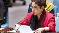 نماینده پاکستان در سازمان ملل: عامل اصلی نا امنی در خاورمیانه وجود اسرائیل است