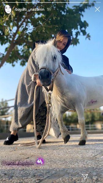 اسب پونی نازنین بیاتی + عکس