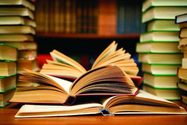حضور سلبریتیها در ادبیات تأثیری ندارد