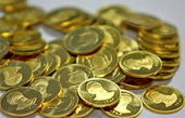 خبرخوش دستگیری سلطان سکه
