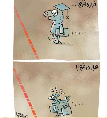 فرار مرغ ها ! ( کاریکاتور)