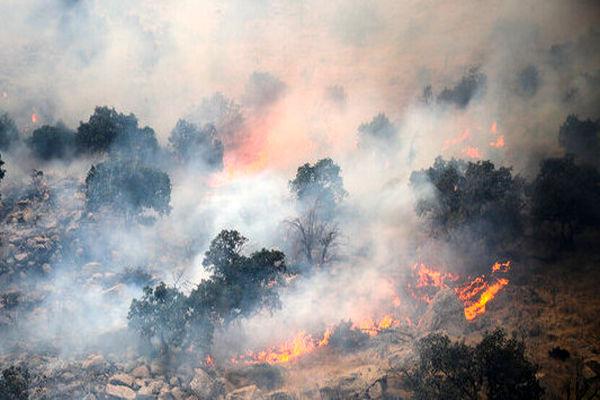 تبعات آتشسوزی نقطهای در جنگلها و مراتع