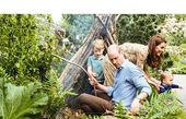 شاهزاده ویلیام همراه همسر و فرزندانش در دامان طبیعت