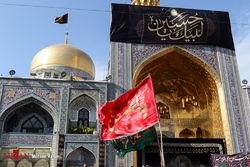 دلیل نامیدن امام هشتم به نام رضا چیست؟