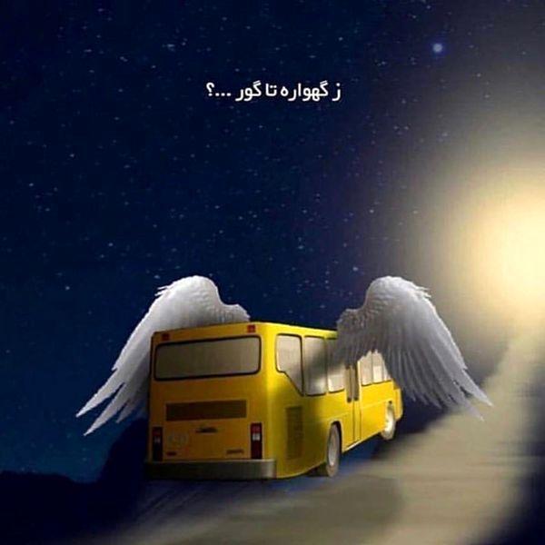 عکسی غم انگیز از «شبنم قلی خانی»