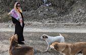سگ های زیبای ماهور الوند + عکس