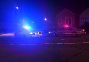 بازداشت یک مرد مسلح نزدیک اقامتگاه معاون بایدن