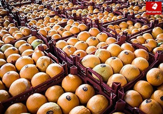 عرضه پرتقال خارجی کیلویی ۳۹۰۰ تومان