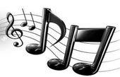 هدف، ترویج موسیقی اصیل ایرانی است