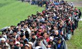 """تخلیه هزاران پناهجو از """"جنگل کاله"""""""