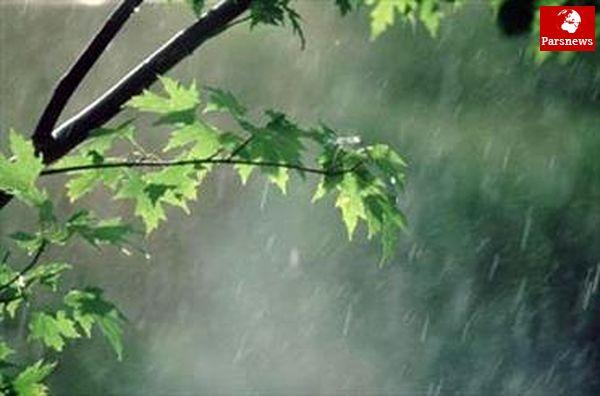 بارش پراکنده باران در اغلب نقاط کشور