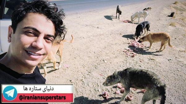 نگهداری محسن ابراهیم زاده از سگ های ولگرد+عکس
