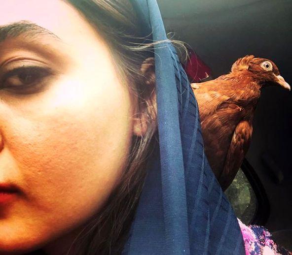 عکس خاص نیلوفر پارسا با حیوان خانگی اش