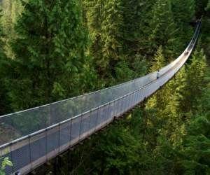 9 نمونه از منحصر به فردترین و زیباترین پل های جهان + تصاویر