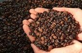 ایرانیها شش برابر کمتر از مردم دنیا کافئین مصرف میکنند