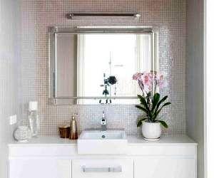 گیاهان آپارتمانی مناسب برای حمام و سرویس بهداشتی