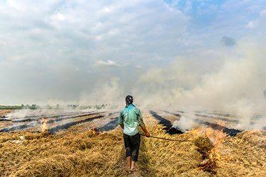 با آتش زدن زمین کشاورزی تمامی مواد مغزی و اکسیژن خاک از بین رفته و باعث آلودگی قابل توجه هوا میشود