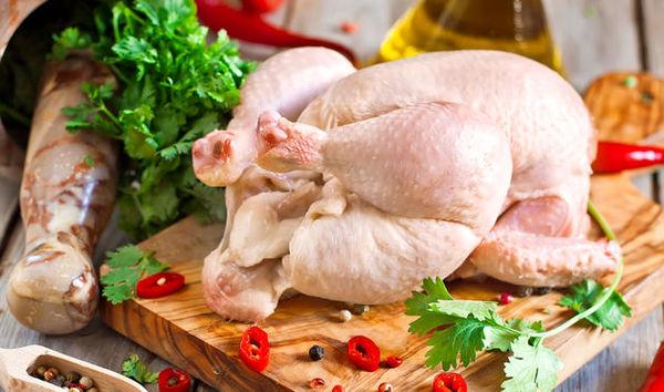 توزیع مرغ منجمد و گرم متوقف شد