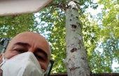 ظاهر این روزهای مهران احمدی + عکس