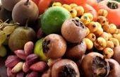 تغذیه سالم فصل پاییز را بشناسید