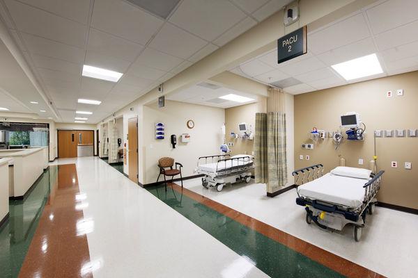 250 جسد به یک بیمارستان انتقال یافت