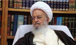 آیتالله مکارم شیرازی: نقاط مبهم FATF شفاف شود