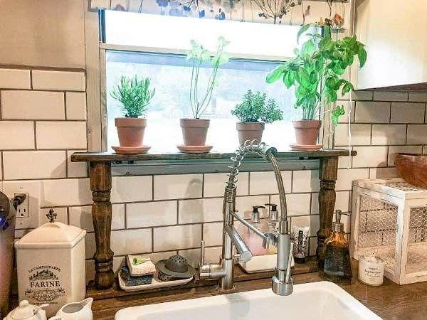گیاهان آشپزخانه