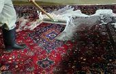 دام قالیشوییهای غیر مجاز برای مردم در هفتههای پایانی سال