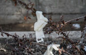 افزایش چشمگیر استفاده از مواد پلاستیکی به دلیل کرونا