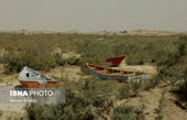 قایقرانی در بیابان ! + عکس