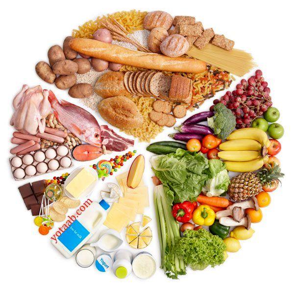 5گروه اصلی مواد غذایی کدامند
