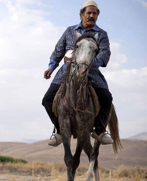 اسب سواری مجید مظفری + عکس