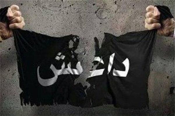 ۱۱ عنصر داعش در ولایت «ننگرهار» بازداشت شدند