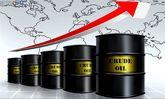 رویترز:شرکت هندی خرید نفت از ایران را ۳۲ درصد کاهش داد