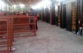 بازدید سرخابیها از گیتهای بلیت فروشی ورزشگاه آزادی