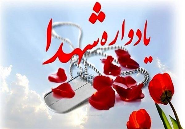 برگزاری یادواره شهدای محله روستای گوهرگان + فیلم