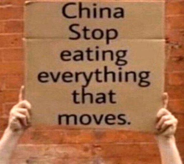 خواهش مردم دنیا از چینیها پس از شیوع کرونا و هانتا +عکس