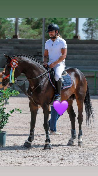 اسب حرفه ای خواننده مشهور + عکس